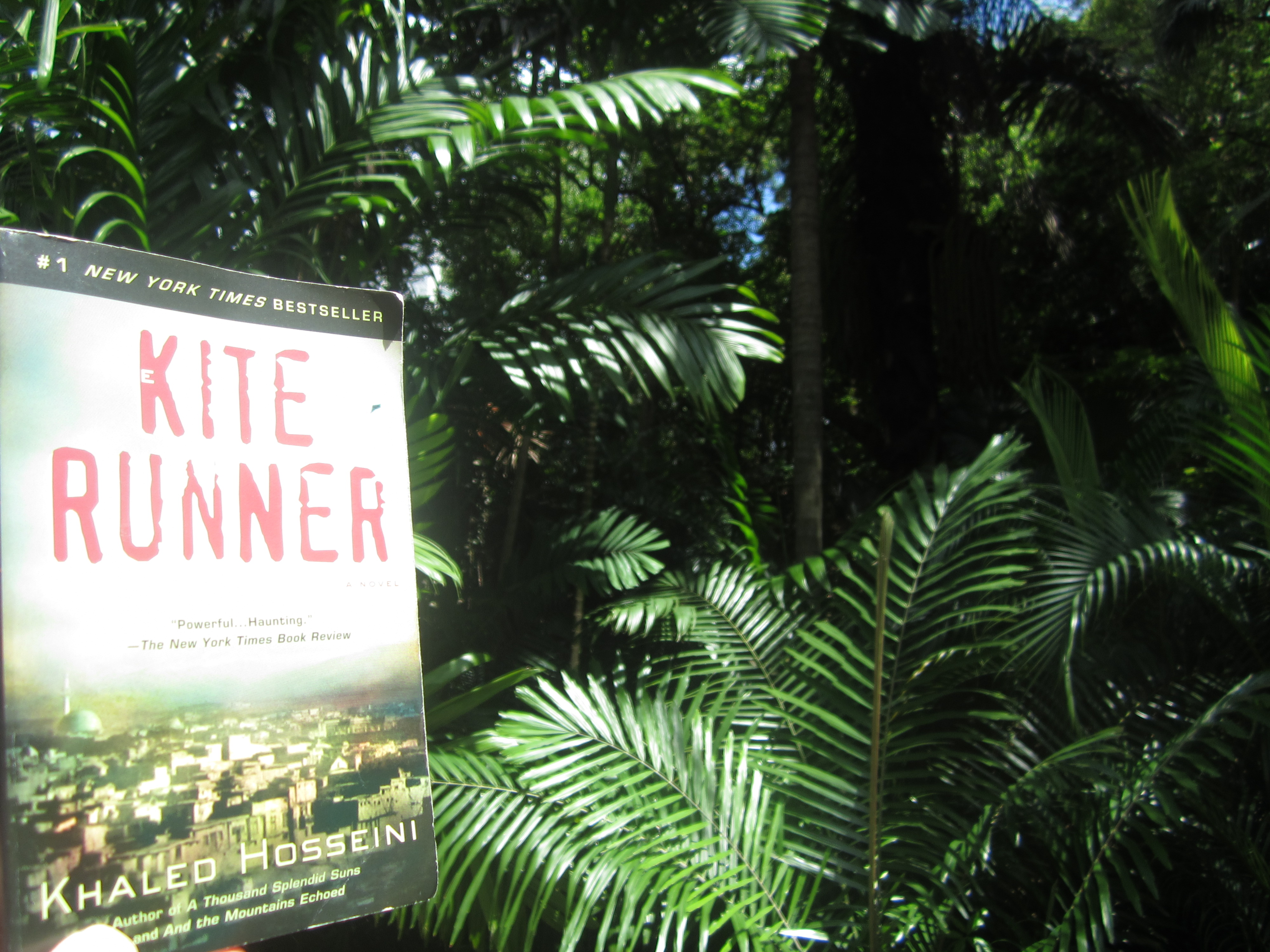 real friendship in the kite runner by khaled hosseini Free essay: friendship in the kite runner by khaled hosseini theme: real  friendships are more than a stubborn act they are actions that surround your  soul.
